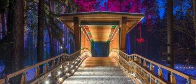 Image Pont en bois dans le parc forestier. Nuit lumières multicolores.