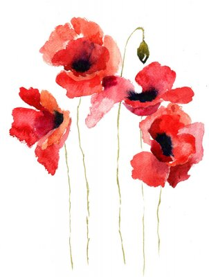 Image Poppy fleurs stylisées illustration