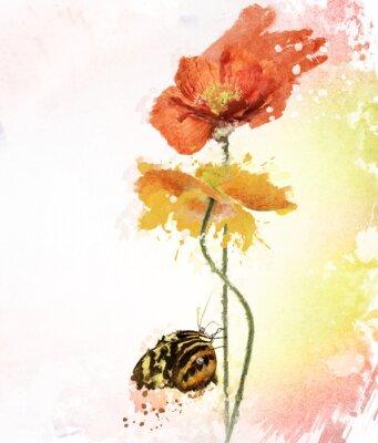 Image Poppy Flowers Aquarelle