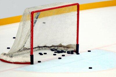 Image Porta le hockey con dischi