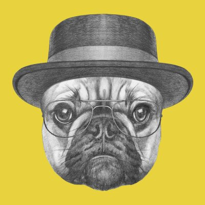Image Portrait of French Bulldog with hat and glasses. Hand drawn illustration.