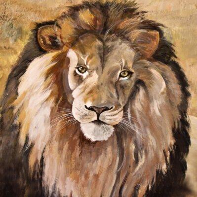Image Portrait of huge beautiful male African lion