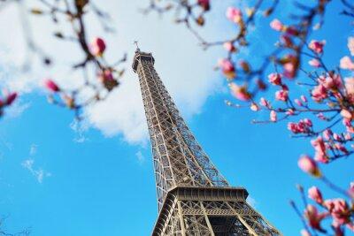 Image Printemps à Paris