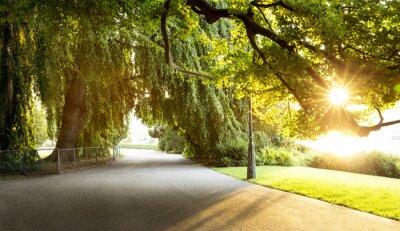 Image Promenade dans un beau parc de la ville