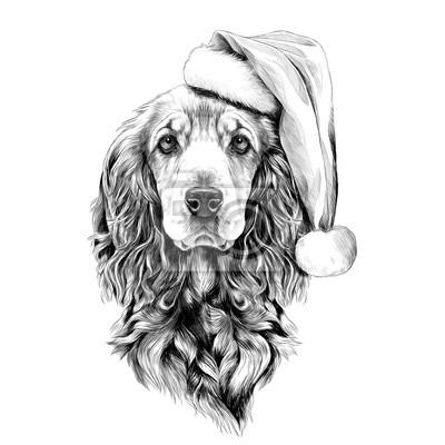 Image Race De Chien Cocker Spaniel Face à Un Chapeau De Père Noël
