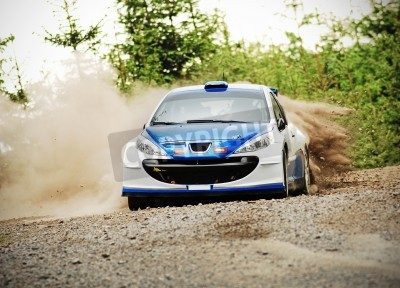 Image Rally car in action