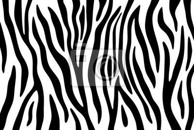 Image Rayures De Zebre Noir Et Blanc Abstrait