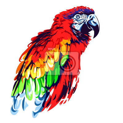 Image Red parrot