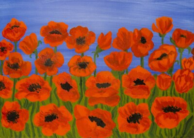 Image Red poppies