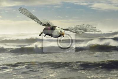 Image Rendering, aigle, voler, bas, sur, le, pacifique, océan ...