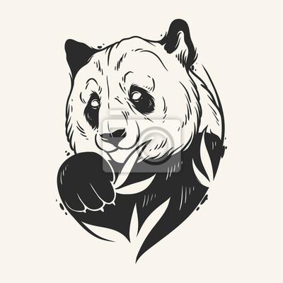 Image Résumé Panda Dessin à La Main