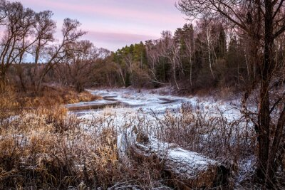 Image Rivière d'hiver ou de printemps et bois