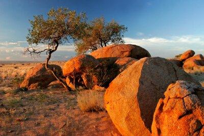 rochers de granit, Brandberg, Namibie