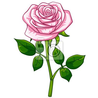 Rose Rose Dessin Anime Peintures Murales Tableaux Tire Rose