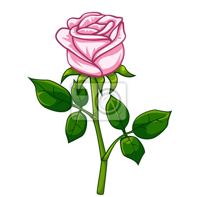 Rose Rose Dessin Animé Peintures Murales Tableaux Tiré Rose