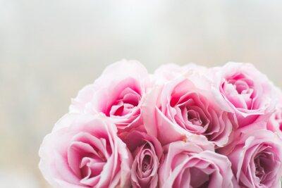 Image Rose, roses, fond