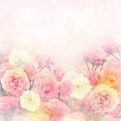 Image Roses Background