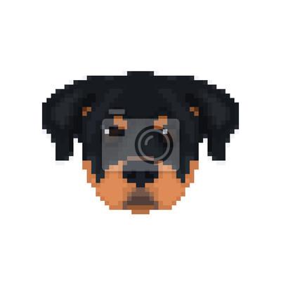 Image Rottweiler Tête En Style Pixel Art Illustration Vectorielle