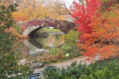 Image Rouge, lierre, Central, Parc, pont