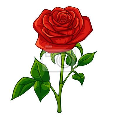Rouge Rose Dessin Anime Style Peintures Murales Tableaux Tire