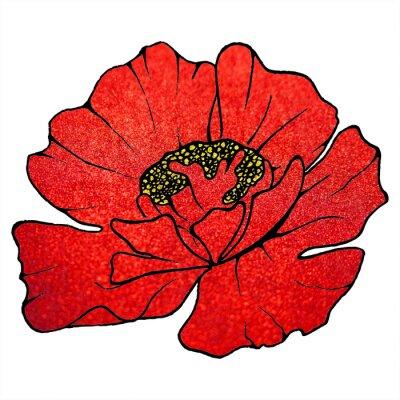 Image Rouges, écarlate, écarlate, fleur, pavot, fond, texture