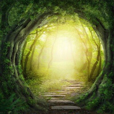 Image Route dans la forêt sombre