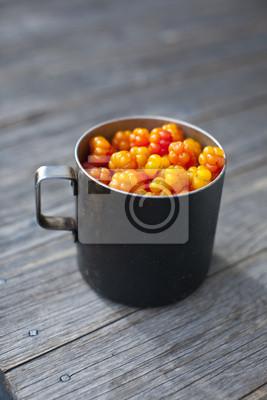 Rubus chamaemorus moros mûriers herbes fruits