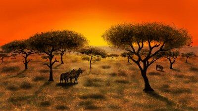 Image Savannah au coucher du soleil