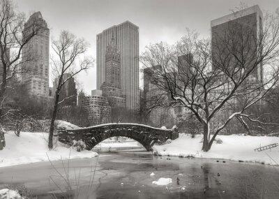 Image Scène d'hiver à Manhattan: l'étang, Gapstow Bridge et Manhatta