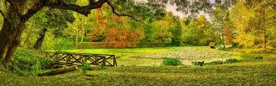 Image Scène de pont à l'automne - Parc de Lipnik (Teketo), région du village de Nikolovo, Bulgarie. Art moderne d'illustration de peinture à l'huile