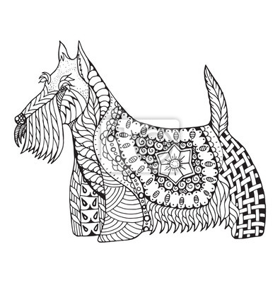 Coloriage Chien Noir Et Blanc.Scottish Terrier Chien Zentangle Stylise Vecteur Illustration