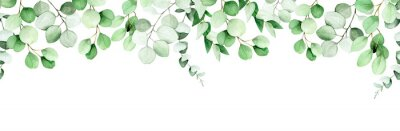 Image seamless border, frame of eucalyptus leaves and branches. watercolor drawing green leaves of eucalyptus on white background. print for wedding, invitations, congratulations. web banner