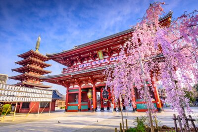 Image Sensoji Temple à Asakusa, Tokyo, Japon