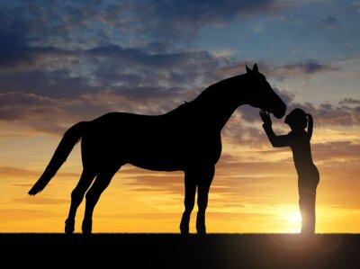 Image Silhouette d'une jeune fille donnant un cheval de baiser dans le coucher du soleil