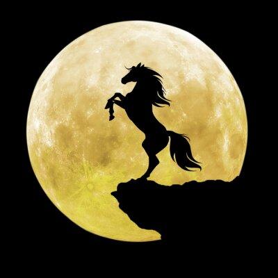 Image Silhouette de cheval noir