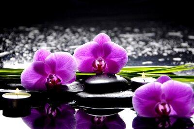 Image Spa encore la vie avec l'ensemble de l'orchidée rose et pierres réflexion