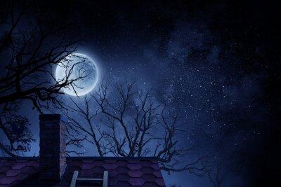 Spooky night image . Mixed media