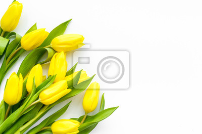 Image Spring composition. Delicate yellow tulips on white background top view copy space border
