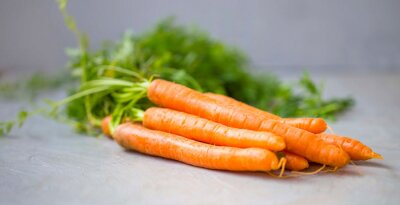 Tas de carottes fraîches