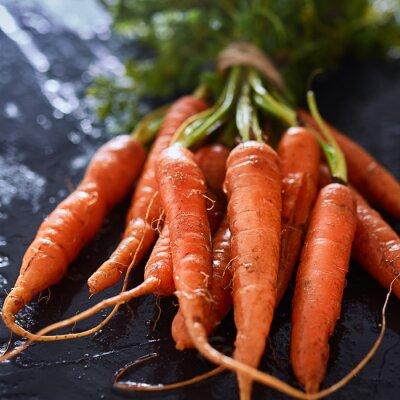 Image Tas, frais, cueilli, carottes, fin, haut