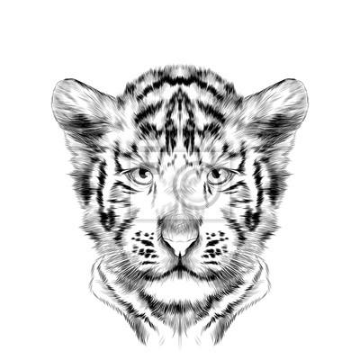 Tête Cube Le Tigre Blanc Est Symétrique Croquis Vecteur Graphique