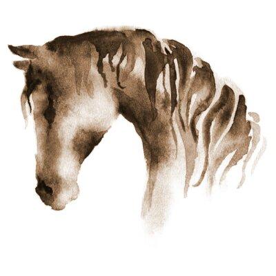 Image Tête de cheval d'aquarelle humide. Cheval brun peint à la main sur blanc.