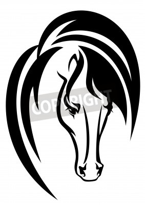 Tete De Cheval Noir Et Blanc Dessin Vectoriel Simple Animal