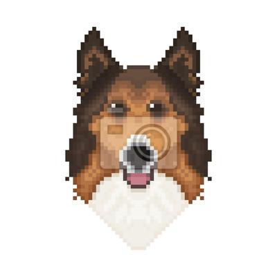 Image Tête De Chien Collie Dans Un Style Pixel Art Illustration Vectorielle