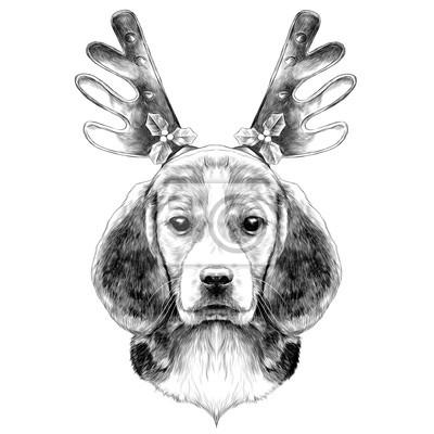 Image Tête De Chien élevent Le Beagle Sur La Tête Bandeau De Noël Avec