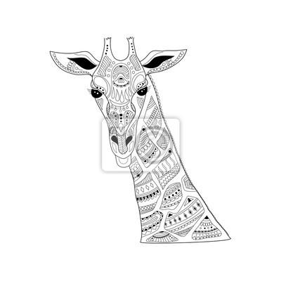Coloriage Tete De Girafe A Imprimer.Tete De Girafe Zentangle Pour Adulte Illustration De Book Vector