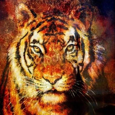 Image Tête de tigre, couleur abstraite Contexte, collage informatique, Contact avec les yeux