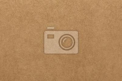 Image Texture de papier kraft brun clair pour le fond