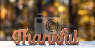 Image Thankful message in wooden letters Thanksgiving theme on a fall forest background