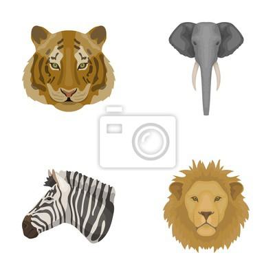 Tigre Lion Elephant Zebre Animaux Realistes Ensemble Des